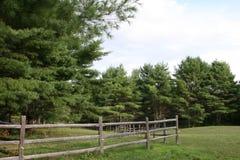trees för green för staketfältgräs Fotografering för Bildbyråer