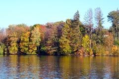 trees för höstlakepark Hösten landskap, färgar Färg som är färgrik royaltyfri fotografi