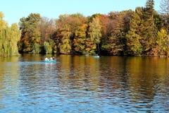 trees för höstlakepark Hösten landskap, färgar Färg som är färgrik arkivfoto