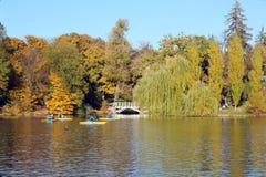 trees för höstlakepark Hösten landskap, färgar Färg som är färgrik royaltyfri bild