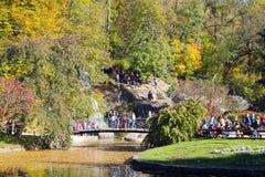trees för höstlakepark Hösten landskap, färgar Färg som är färgrik arkivfoton