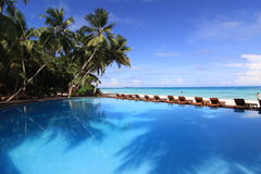 trees för kokosnötinifinitymaldives pöl royaltyfri fotografi