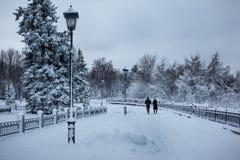 trees för park för den dagfrostjanuari naturen övervintrar snöig 3d isolerade objektfolksilhouettes Arkivbilder