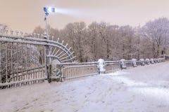 trees för park för den dagfrostjanuari naturen övervintrar snöig Royaltyfria Foton