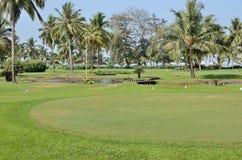trees för sand för golf för flagga för höstfärgfält Royaltyfria Foton