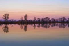 trees för silhouette för morgon för dimmahusliggande arkivfoto