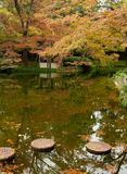Trees in Fall Color by a Pond. Trees in fall color reflected in a pond in a Japanese garden Royalty Free Stock Image