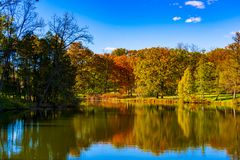 Trees in fall colors. Tree during fall season in fall colors refklected in a lake in the foreground stock image