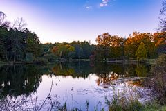 Trees in fall colors. Tree during fall season in fall colors refklected in a lake in the foreground royalty free stock image