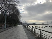 Trees with fallen leaves on Manhattan Island in New York along the Hudson River with the remains of an old pier lined with concre stock photography