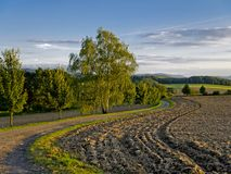 Trees and farmland Stock Images