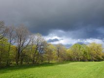 Spring trees, green field and cloudy sky, Lithuania Stock Photo