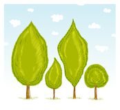 Trees in forest. A hand drawn illustration Stock Image