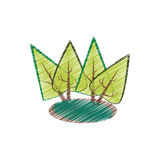 Trees forest field emblem Royalty Free Stock Photos