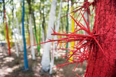 Trees in a forest painted with different colours as a protest of Royalty Free Stock Image