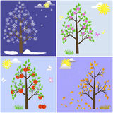 Trees in four seasons. Stock Photo