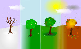 Trees in four seasons. Four trees: winter, spring, summer, fall. Symbol of the circle of live. Everything is developing and change in different stages if part of Royalty Free Stock Photography