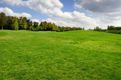 trees för sand för golf för flagga för höstfärgfält Arkivfoton