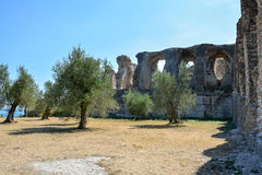 Trees in front of the Grotto di Catullo near Sirmione at lake Ga Royalty Free Stock Photo
