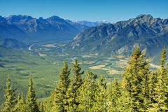 Trees in front of valley. River winding through a mountain lined valley Stock Photos