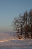 Trees by the frozen river filled with evening sun rays over the blue sky and a moon Stock Photos