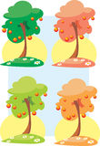 Trees with fruits Stock Photo