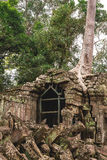 Trees and galleries in Ta Prohm Temple, Cambodia. Royalty Free Stock Images