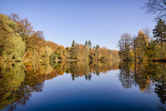 Trees at a glassy lake Royalty Free Stock Photography