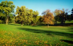 Trees in golf course, Omaha, Nebraska Royalty Free Stock Photography