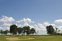 Trees on a golfcourse Royalty Free Stock Images