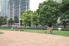 Trees and grass. In the park grass and trees and chairs Royalty Free Stock Photography