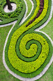 Trees and Grass in a Garden. Stock Photos