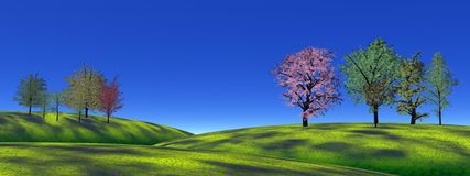Trees and grass hills Stock Photography