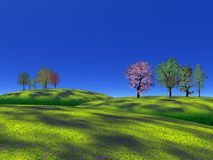 Trees and grass hills Stock Image