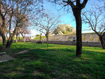 Trees and grass in a park and in the background the old fortress. In Corfu island Greece Royalty Free Stock Image