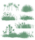 Trees and grass silhouettes Royalty Free Stock Images