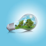Trees, grass and sky in the light bulb Stock Photography