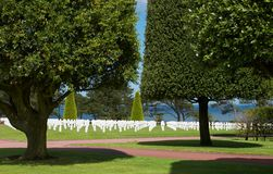 Trees and graves Royalty Free Stock Photography