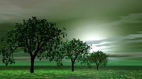 Trees green. Three trees green and landscape green and yellow Stock Photography