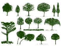 Trees green color and isolate and clipping paths. Trees graphic art is green color and isolate on white background and clipping paths, all no has reference all Royalty Free Stock Photography
