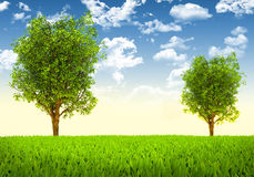 Trees and green landscape Royalty Free Stock Images