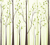 Trees 43. Trees with green leaves on white background Royalty Free Stock Photo