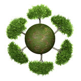 Trees on a green sphere. Concept preservation of an environment Stock Images