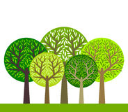 Trees group. The group of green trees. Vector illustration Royalty Free Stock Photo
