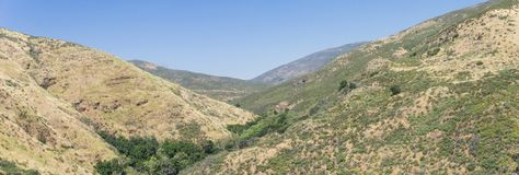 Panorama of Creek in California Canyon Stock Images
