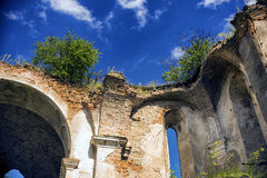 Trees grow on the walls of tumbledown church. Bushes and grass grow on the walls of the dilapidated church and above them in the sky floating white clouds Stock Photography