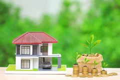 Trees growing on gold coins money in bag and wooden house on natural green background, Investment and Real estate concept royalty free stock photos