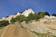 Trees growing on Moens Klint. Unique limestone cliff in Zealand, Royalty Free Stock Photography