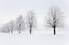 Winter season Stock Photography