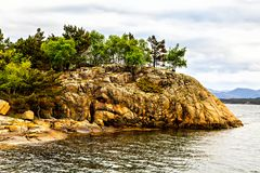 Trees growing on the stone hill by the sea Stock Photo